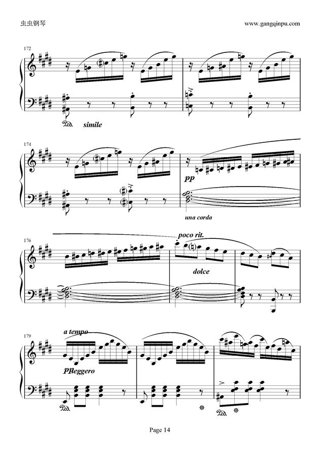 e小调随想回旋曲钢琴谱 第14页
