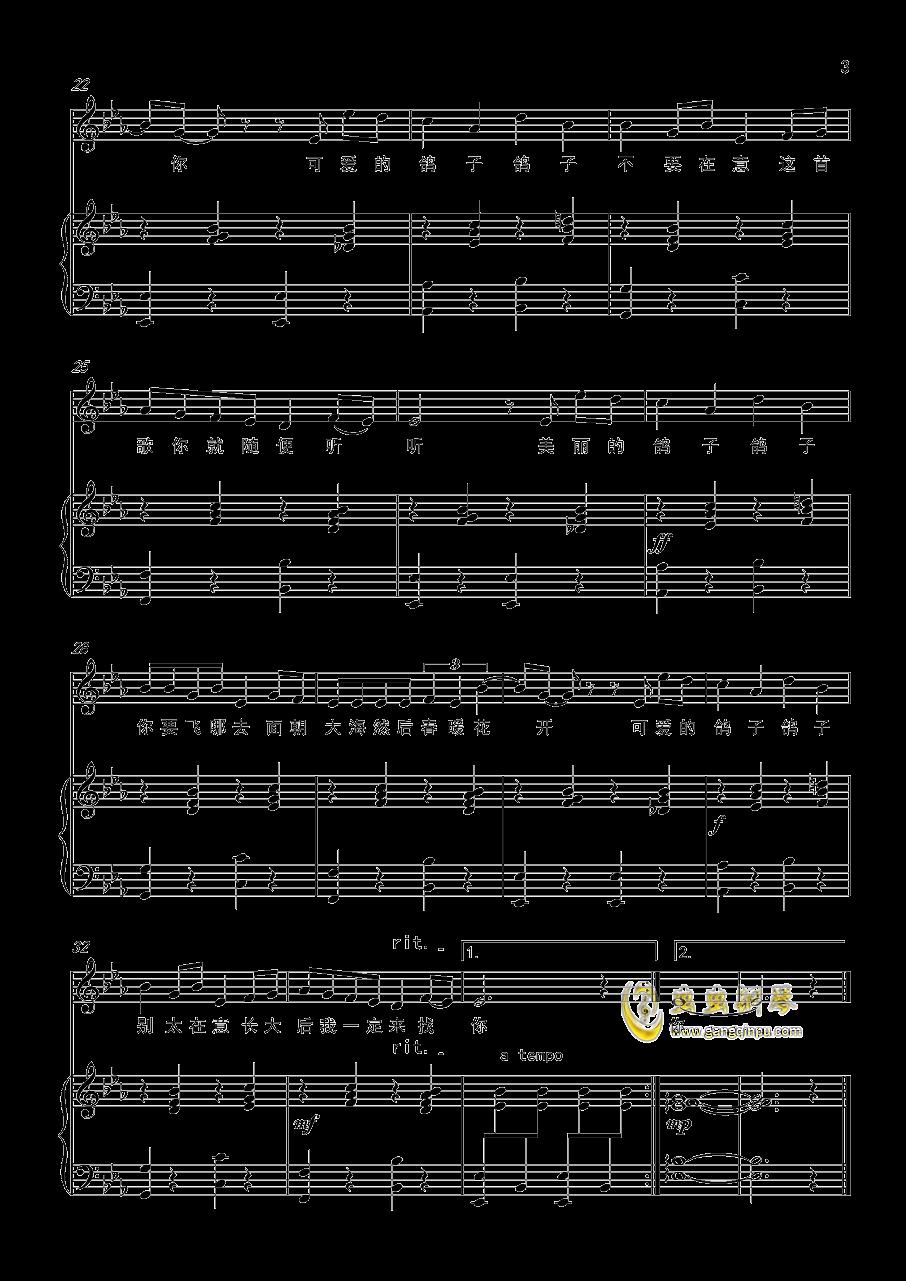 鸽子钢琴谱 第3页