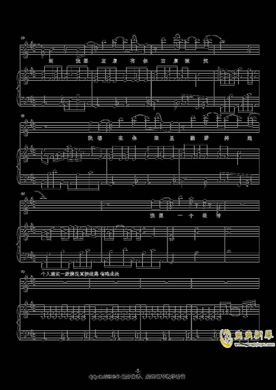 撒野钢琴谱 第5页