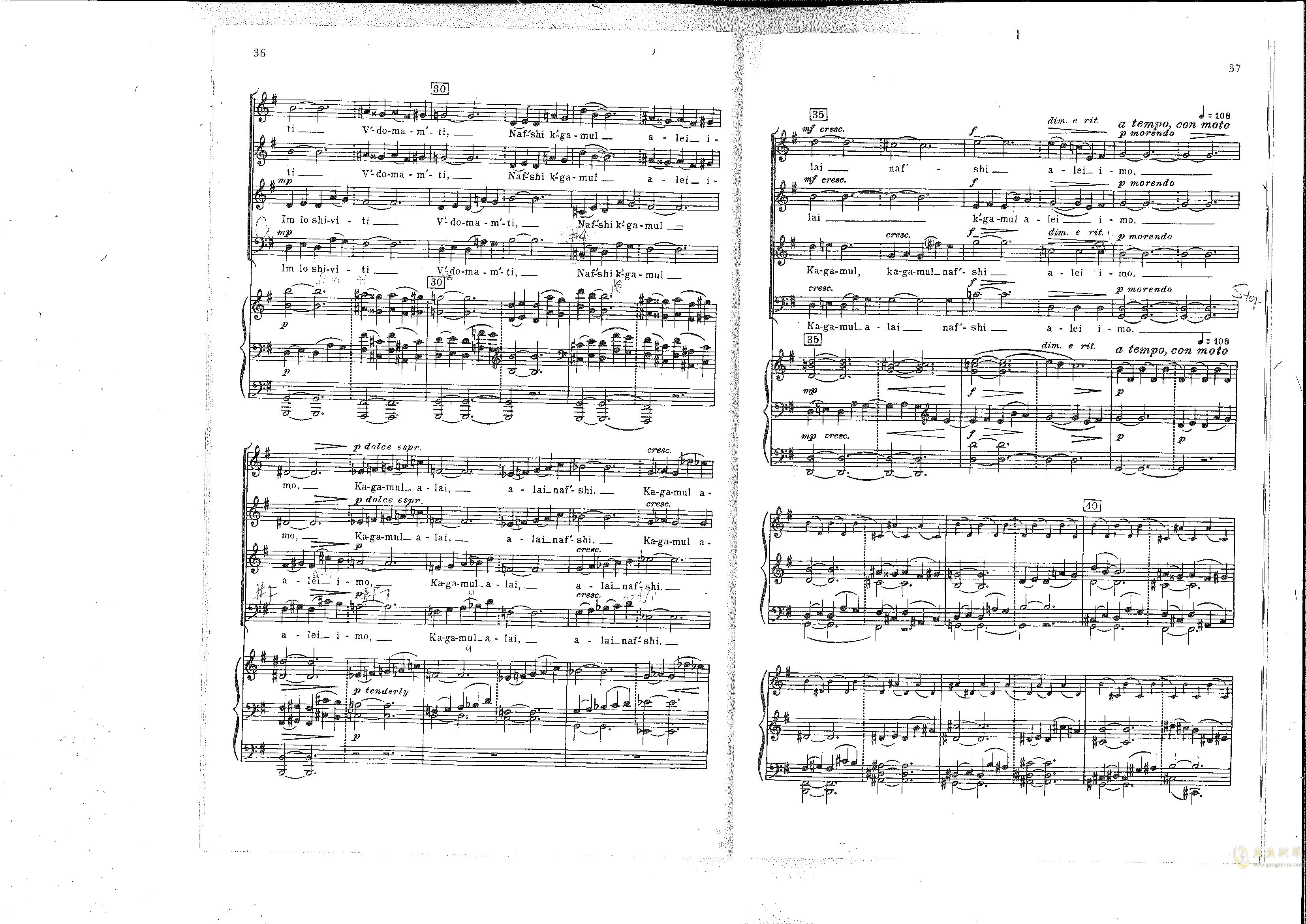 Chichester Psalms澳门星际官网 第22页